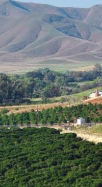 CalCAN: State legislature passes record budget bills