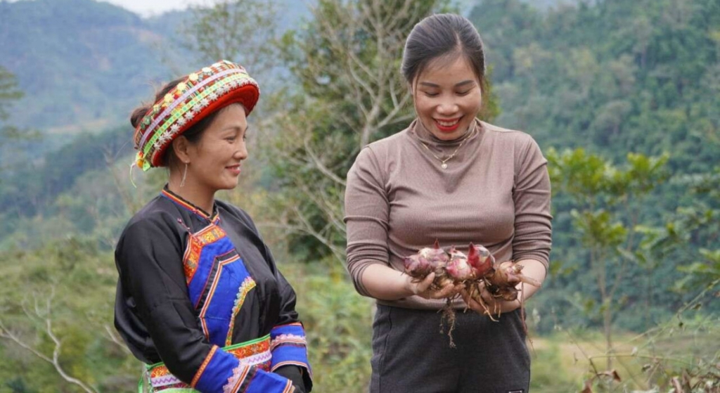 Bringing cultures together on the farms and mountains of Viet Nam